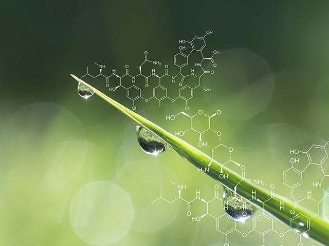 moleculas
