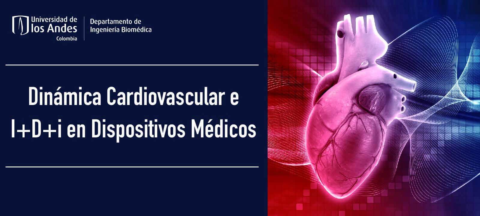 Dinámica Cardiovascular