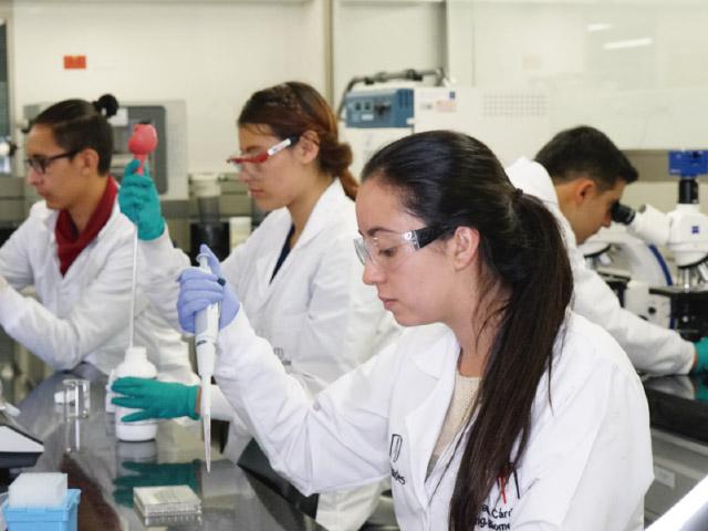 laboratorio preguntas fecuentes